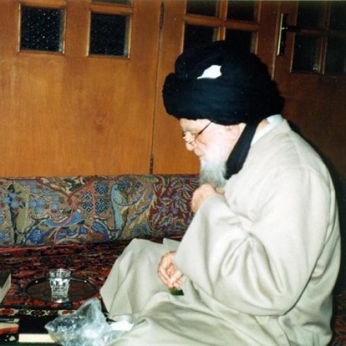 ملاقات استاد موسوی مطلق با آیت الله العظمی سید عزالدین زنجانی