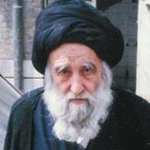 ملاقات استاد سیّدعباس موسوی مطلق با آیت الله سید جواد فقیه سبزواری