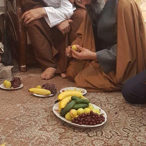 تصاویر ملاقات استاد سیّدعباس موسوی مطلق با آیت الله شوشتری