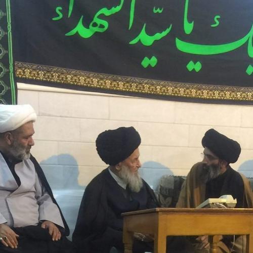 ملاقات حجت الاسلام سید عباس موسوی مطلق با آیت الله العظمی علوی گرگانی