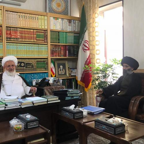ملاقات حجت الاسلام سیدعباس موسوی مطلق با آيت الله ناصرى يزدى
