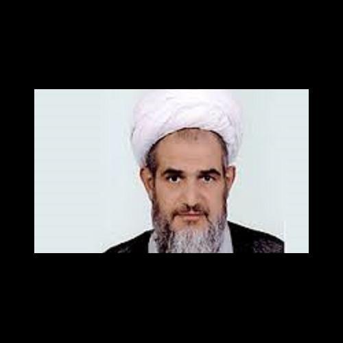 ملاقات حجت الاسلام موسوی مطلق با مرحوم آیت الله غروی تبریزی