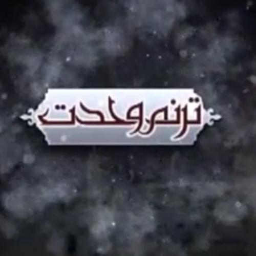 ویدئو درباره وحدت از حجت الاسلام سیّدعباس موسوی مطلق
