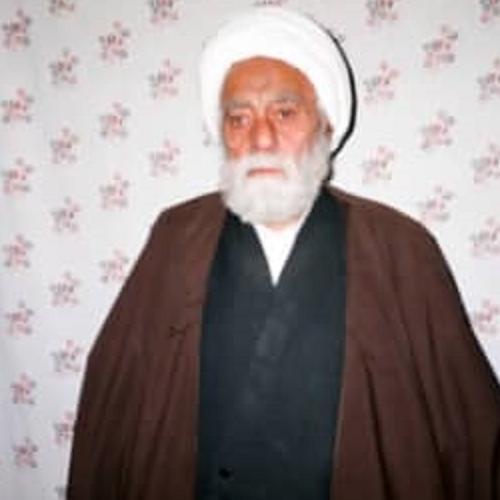 ملاقات استاد سیدعباس موسوی مطلق با آیت الله حاج شیخ محمدتقی مطهری
